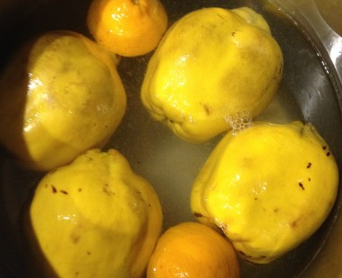 lovely quinces and lemons