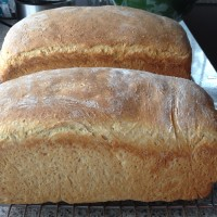 Rolled Oat Milk Bread