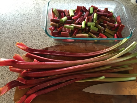 chopping rhubarb