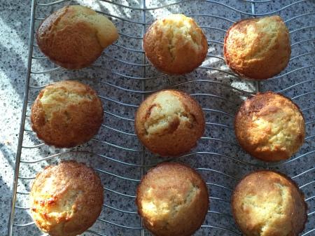 olive oil orange muffins