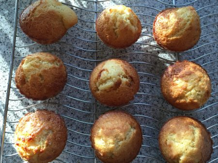 Lemon olive oil muffins